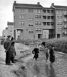 1953. Children playing in a puddle in the borough of Slotermeer in Amsterdam. #amsterdam #1953 #Slotermeer