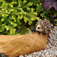 Hedgehog on a Brown Leaf - absolutely adorable, I really, really want one!
