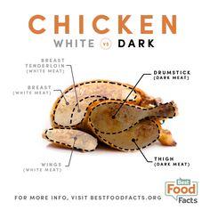 white-dark-chicken-infographic-best-food-facts