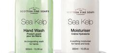 Hotel Soap, Shampoo and shower gel Hotel Toiletries, Hotel Soap, Soap Company, Moisturiser, Shower Gel, Twin, Shampoo, Sea, Bottle