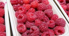 De zomer staat al weer voor de deur en veel van ons doen hun beste om op hun ideale gewicht ga komen. Naast dat bewegen gezond is en bijdraagt om de kilootjes kwijt te raken is je eetpatroon net zo… Smoothies, Raspberry, Low Carb, Diet, Fruit, Healthy, Om, Weight, Workout