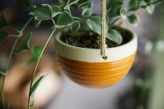 Ceramic Hanging Planter hanging basket by FunctionPottery