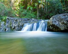 There are amazing waterfalls on the Gold Coast. Purling Brook falls are magnificent and are the highest in Australia. Brunswick Heads, Float Your Boat, Sunshine Coast, Gold Coast, Waterfall, Australia, Lifestyle, Amazing, Fun Things