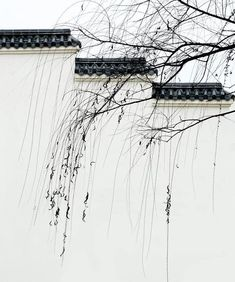 Chinese Architecture settled really constant throughout the cases of the united states. Chinese Style, Chinese Art, China Architecture, Chinese Element, Tinta China, Chinese Garden, Chinese Culture, Interior Exterior, Chinese Painting