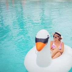 Just me and my swan #bahamas #albany #swan #poolday