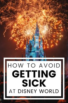 Vacations To Go, Disney Vacations, Disney Trips, Disney Disney, Drink Plenty Of Water, Disney World Trip, Getting Out, Travel Size Products, How To Stay Healthy