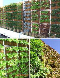 Living Walls: 15 More Vertically Vegetated Buildings