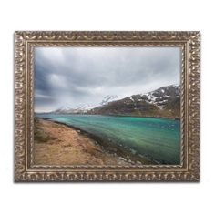 Trademark Fine Art Escape Canvas Art by Philippe Sainte-Laudy, Gold Ornate Frame, Size: 16 x 20
