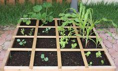 Jardin Biologique: Méthode du jardinage en carrés de Mel Bartholomew Outdoor Decor, Garden Design, Green, Green Thumb, Plants, Outdoor, Stepping Stones, Outdoor Structures