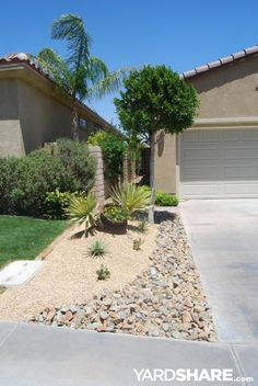 Oasis in the Desert: The left side of the driveway got a similar treatment to the main yard ... a sculptured gravel/rock