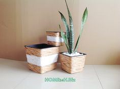 Home24h co,.ltd: Planters Hyacinth Home24h - Hyacinth Planter Pots , Natural Crafts -Home24h.biz