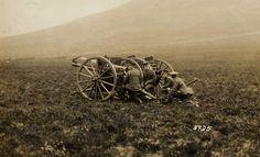 артиллерия 1 мировой войны фото: 20 тыс изображений найдено в Яндекс.Картинках