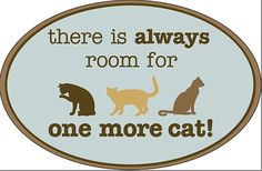 Oval Flexible Magnet for Cat Lovers!