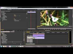 Premiere Pro Tutorial: Using Adobe's Blend Modes to Create Rich, Filmic Images in a Jiffy