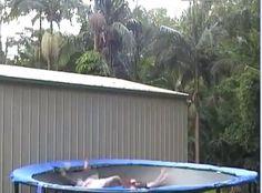 Trampoline fun - http://www.l4lol.com/trampoline-fun/ #HappyNewYear2016 #HappyNewYearImages2016 #HappyNewYear2016Photos #HappyNewYear2016Quotes