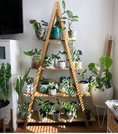 You can enhance your room with amazing planter stand and this is the ideal examp. - You can enhance your room with amazing planter stand and this is the ideal example of it. This room - # House Plants Decor, Plant Decor, Bedroom Plants, Bedroom Decor, Bohemian Style Home, Modern Bohemian, Bohemian Decor, Interior Design Living Room, Interior Decorating