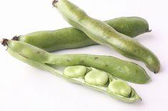 「そらまめ」は世界最古の農作物の一つで、原産地は北アフリカからカスピ海沿岸と言われています。疲労回復、むくみの改善に効果のあるビタミンB1、カリウムを豊富に含んでいます。  マクロビ的に、豆類はほぼ中庸(ちゅうよう:陰と陽の中間)に分類されており、日常の基本食のガイドラインでも豆とその加工品の摂取は、食事全体の10%程度摂ることをすすめています。  香りが良く、ふっくらやわらかくおいしいそらまめは、脂肪や糖の代謝も助けてくれるほか、豊富に含むタンパク質が肝機能を保護してくれます。またカリウムが余分な塩分や水分を排泄してくれることから、お酒のおつまみとしても最適です。  さやから出して空気に触れると一気に鮮度が落ちるので、さや入りのものを購入し、調理の直前にさやから出してフレッシュなものをいただきましょう。