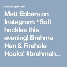 "Matt Ebbers on Instagram: ""Soft hackles this evening! Brahma Hen & Firehole Hooks! #brahmahenislife #EbbsForceFlies #whitingfarms #flyfishfood #loonoutdoors…"""