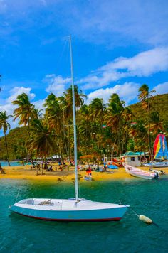 Marigot Bay on the island of St. Places To Travel, Places To See, Travel Destinations, Bora Bora, Dream Vacations, Vacation Spots, Iles Grenadines, Costa, Sainte Lucie
