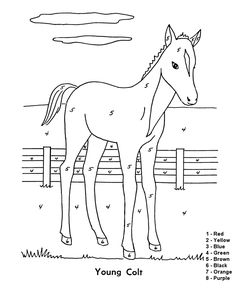 horse outlines to trace horse drawings to trace horses easy diy pinterest coloring. Black Bedroom Furniture Sets. Home Design Ideas