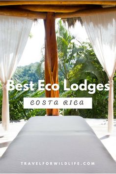 A selection of our favorite Costa Rica eco lodges which are located in the Osa Peninsula. Their proximity to the wildlife rich Corcovado National Park and the beach makes them the perfect location for your Costa Rica vacation.