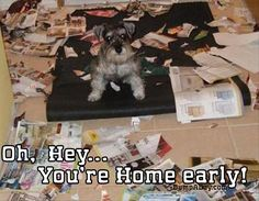 Oh Hey, You're Home Early – 24 Pics