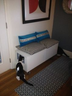 Cat lovers! Here's a bench that hides a kitty litter.