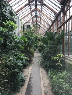 Loved visiting Cambridge botanical gardens❤️ Cambridge Botanical Gardens, Visit Cambridge, Botany, Fresh, Plants, Plant, Planets