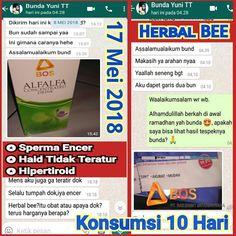 obat kuat herbal obat tradisional pria perkasa obatkuat