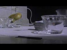 Medios de cultivo para germinacion de semillas de orquidea [medium for o...