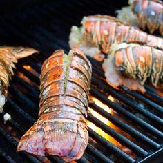 stuff lobster tail * stuff lobster tail recipes + stuff lobster tail + crab stuff lobster tail + how to stuff lobster tails + baked stuff lobster tail Baked Lobster Tails, Cooking Lobster Tails, Grilled Lobster, How To Cook Lobster, Grilled Seafood, How To Cook Fish, Lobster Meat, Slow Cooking, Cooking On The Grill