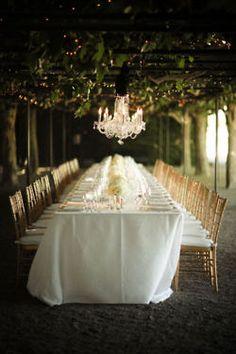 Reception under the Vines