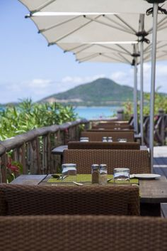 Great dining+great view+great service= great meal
