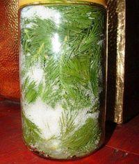 · kb. 2 normál méretű befőttesüvegnyi friss fenyőhajtás · 12-14 evőkanál cukor · 5 evőkanál méz Életembe...