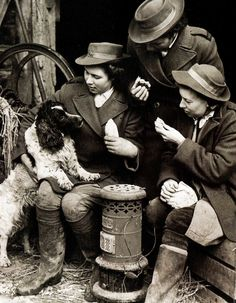 Farmers have established kitchens on their farms in which food can be cooked on the spot for the workers. Pictured here are workers of the Womens Land Army (Land Girls) with a Spaniel dog during a lunch-time break on a farm in Sevenoaks, Kent ~ Women In History, British History, Women's Land Army, Spaniel Dog, Springer Spaniel, Spaniels, Land Girls, Vintage Pictures, Fotografia