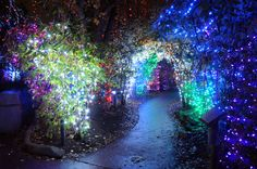Christmas in Columbus is a great time of year! Check out some great events to…