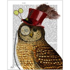 FabFunky Owl With Top Hat Print ($44) ❤ liked on Polyvore featuring home, home decor, wall art, art, backgrounds, animals, owl, brown, owl home decor and paper wall art