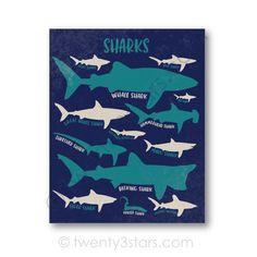 Sharks Poster Print Kinds of Sharks Bathroom Nursery or Ocean Bedroom Kids, Ocean Themed Nursery, Ocean Room, Beach Bedrooms, Sea Nursery, Nursery Art, Shark Room, Shark Gifts, Shark Art