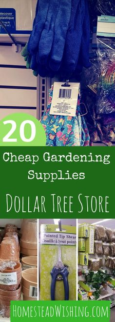 20 Dollar Tree Gardening Supplies - Cheap Gardening Supplies - Garden For Cheap - Gardening Tricks - Homestead WIshing, Author Kristi Wheeler   http://homesteadwishing.com/dollar-tree-gardening-supplies/    dollr-tree-gardening-supplies, cheap-gardening-supplies, - gardening-for-cheap  
