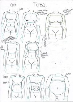 how_to_draw_different_body_types_by_takaya_ame-d55cgje