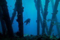 underwater peir - Google Search