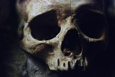 skull old death poison ancient anthropology departed deceased RIP dark eerie Loki Laufeyson, The Undertaker, Hawke Dragon Age, Yennefer Of Vengerberg, Hades And Persephone, Black Sails, Pirate Life, Necromancer, Pirates Of The Caribbean