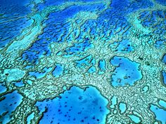A state-of-the-art instrument, usually found on satellites and spacecraft, will survey coral reefs on Earth.
