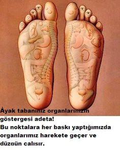 Ayakta hangi organ hangi kısma bağlı biliyormusunuz?ve bu noktalara masaj yaptığınızda o organınız düzgün çalışır