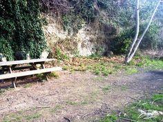 Zona de picnic i futura zona d'esbarjo!