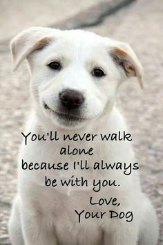 You'll never walk alone because I'll always be with you.