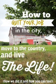 A step-by-step guide to how we left the city life and moved to a big property in the country before the age of thirty. You could too!