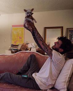 Austin is so adorable. That's such a cute dog, erdmahgerd.