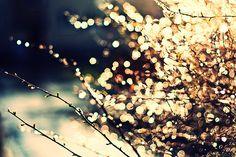 Que a luz possa iluminar o nosso caminho