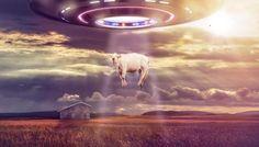 ''A terra é como um supermercado gigante para os extraterrestres'' afirma ex-funcionário da CIA ~ Sempre Questione